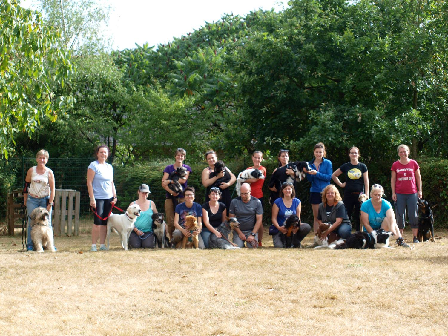 Atelier frisbee/ ars canis photo / educationcanine35