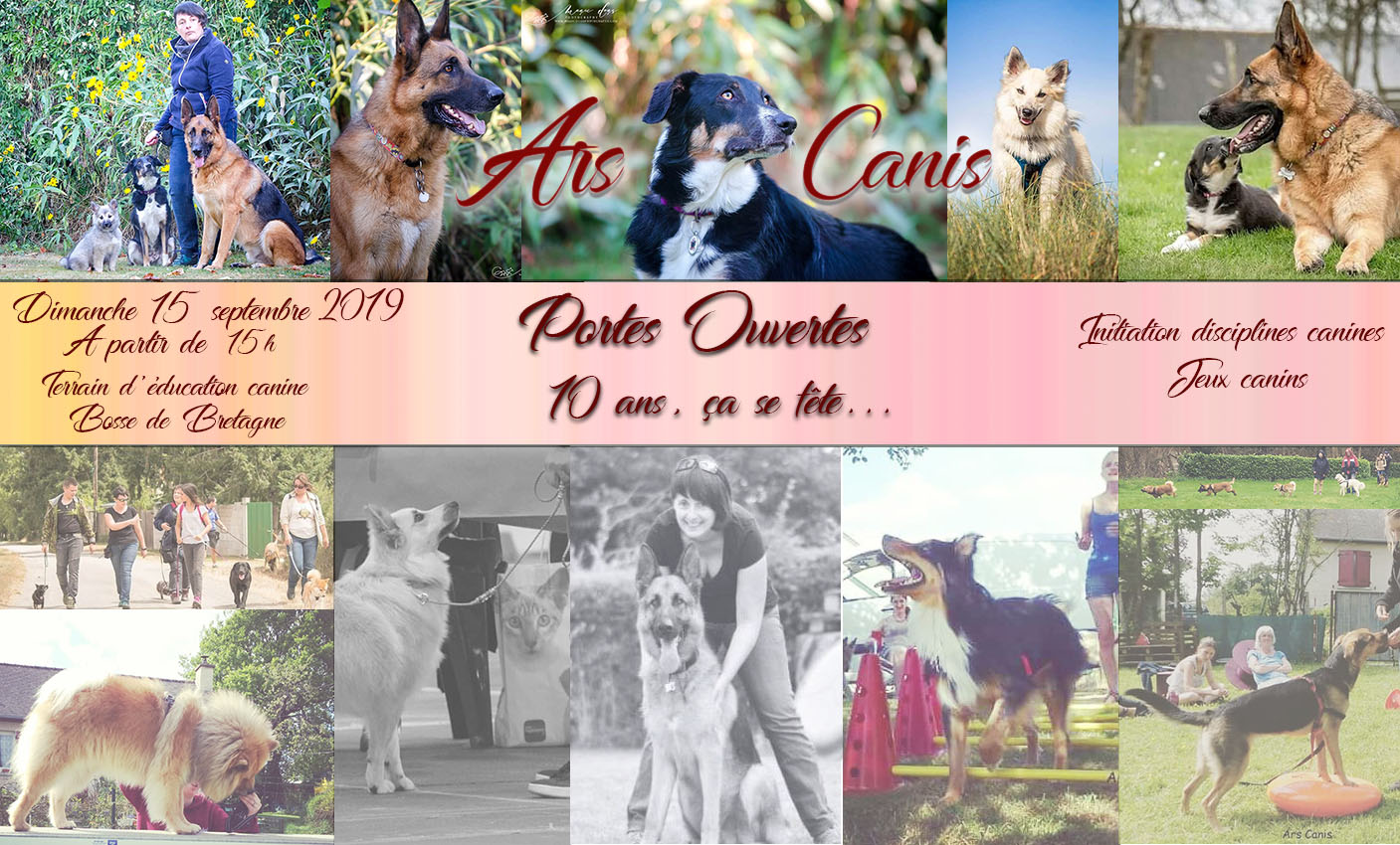 Portes ouvertes Ars Canis 2019